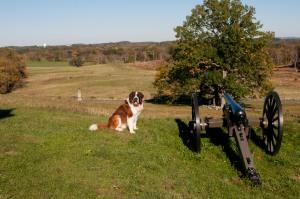 Gettysburg8